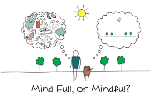 MindFulness introductie