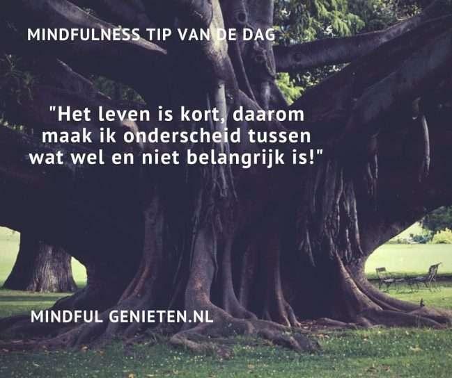 mindfulness-tip-het-leven-is-te-kort